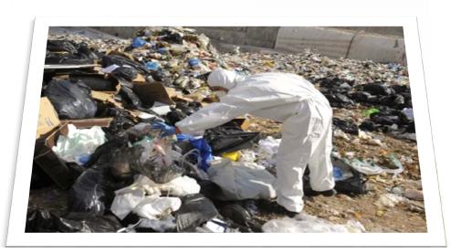 pollution4_.jpg